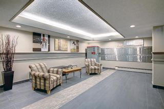 Photo 25: 327 820 89 Avenue SW in Calgary: Haysboro Apartment for sale : MLS®# A1145772