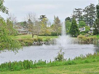 Photo 18: 303 5327 Cordova Bay Rd in VICTORIA: SE Cordova Bay Condo for sale (Saanich East)  : MLS®# 605408