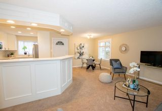 Photo 11: 246 Allan Crescent SE in Calgary: Acadia Detached for sale : MLS®# A1062297