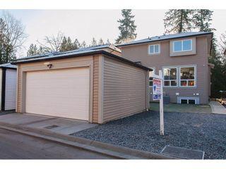Photo 3: 24279 112 Avenue in Maple Ridge: Cottonwood MR House for sale : MLS®# R2223291