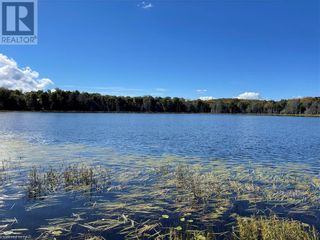 Photo 9: 300 HAMILTON LAKE Road in South River: Vacant Land for sale : MLS®# 40159931