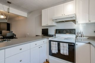 Photo 6: 18138 81 Avenue NW in Edmonton: Zone 20 Townhouse for sale : MLS®# E4239667