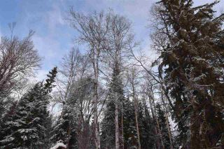 """Photo 13: 3 3000 DAHLIE Road in Smithers: Smithers - Rural Land for sale in """"Mountain Gateway Estates"""" (Smithers And Area (Zone 54))  : MLS®# R2280165"""