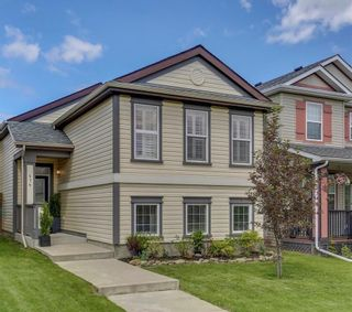 Photo 2: 414 SAGEWOOD Drive SW: Airdrie Detached for sale : MLS®# C4256648