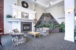 Photo 31: 306 1920 14 Avenue NE in Calgary: Mayland Heights Apartment for sale : MLS®# A1050176