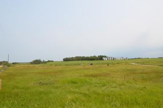 Photo 5: Highway 29 & Range Rd 181: Rural Lamont County Rural Land/Vacant Lot for sale : MLS®# E4258171