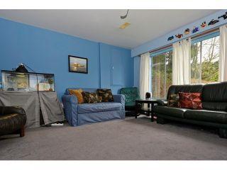 Photo 12: 4883 44B AV in Ladner: Ladner Elementary House for sale : MLS®# V1106583