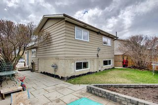 Photo 31: 80 Erin Grove Close SE in Calgary: Erin Woods Detached for sale : MLS®# A1107308