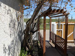 Photo 35: 1144 Lake Huron Crescent SE in Calgary: Bonavista Downs Detached for sale : MLS®# A1098610
