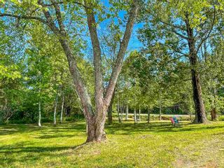 Photo 30: 3674 HIGHWAY 359 in Halls Harbour: 404-Kings County Residential for sale (Annapolis Valley)  : MLS®# 202114996