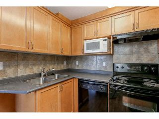 """Photo 13: 302 189 ONTARIO Place in Vancouver: Main Condo for sale in """"Mayfair"""" (Vancouver East)  : MLS®# V1132012"""