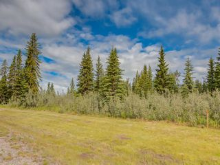 Photo 2: 8 34364 RANGE ROAD 42: Rural Mountain View County Land for sale : MLS®# A1017744