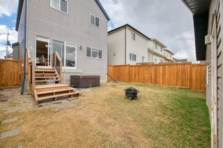 Photo 40: 113 Copperstone Circle SE in Calgary: Copperfield Detached for sale : MLS®# A1103397