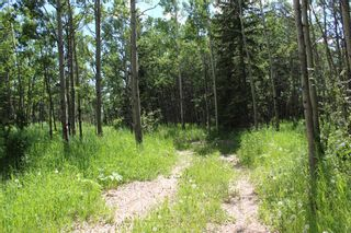 Photo 9: 25255 Bearspaw Place in Rural Rocky View County: Rural Rocky View MD Land for sale : MLS®# A1013795