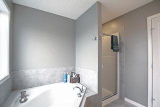 Photo 27: 138 Silverado Plains Circle SW in Calgary: Silverado Detached for sale : MLS®# A1146264