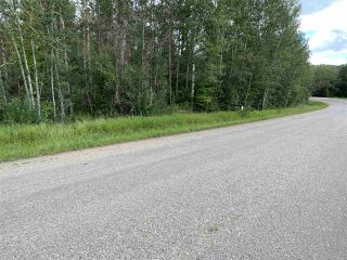 Photo 10: King St & 2nd Ave: Rural Parkland County Rural Land/Vacant Lot for sale : MLS®# E4171458