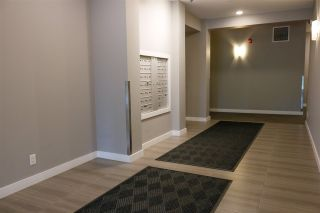 Photo 36: 208-8525 91 ST in Edmonton: Zone 18 Condo for sale : MLS®# E4234315