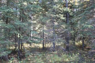 Photo 19: ON Township Road 355A: Rural Red Deer County Land for sale : MLS®# A1039276