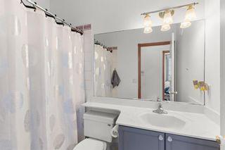 Photo 28: 254141 Range Road 274: Delacour Detached for sale : MLS®# A1126301