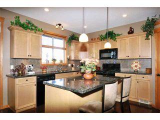 "Photo 5: 31 24185 106B Avenue in Maple Ridge: Albion Townhouse for sale in ""TRAILS EDGE"" : MLS®# V1055374"