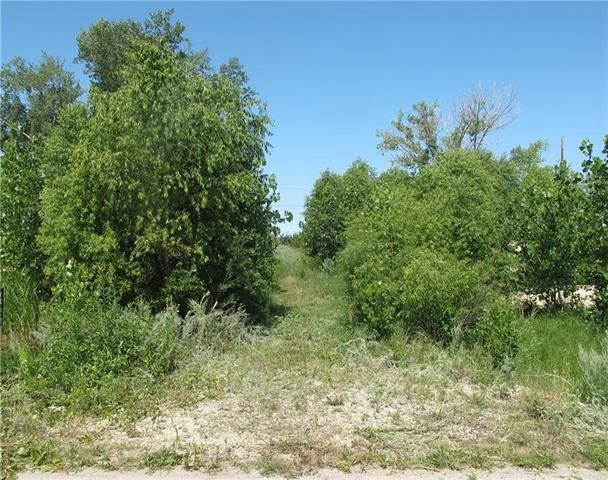Main Photo:  in St Laurent: Twin Lake Beach Residential for sale (R19)  : MLS®# 1919398