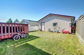 Photo 46: 145 Taravista Crescent NE in Calgary: Taradale Detached for sale : MLS®# A1125771