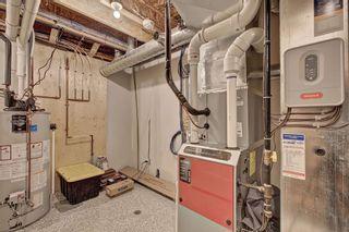 Photo 47: 1 SPARROW Close: Fort Saskatchewan House for sale : MLS®# E4246324