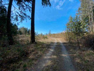 Photo 8: 1815 HARMAN Road: Roberts Creek Land for sale (Sunshine Coast)  : MLS®# R2614266