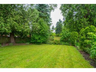 Photo 36: 35371 WELLS GRAY Avenue in Abbotsford: Abbotsford East House for sale : MLS®# R2462573
