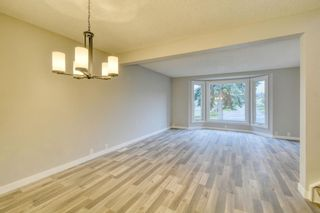 Photo 14: 215 Strathearn Crescent SW in Calgary: Strathcona Park Detached for sale : MLS®# A1146284