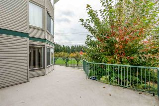Photo 18: 120 2451 GLADWIN Road in Abbotsford: Abbotsford West Condo for sale : MLS®# R2414045