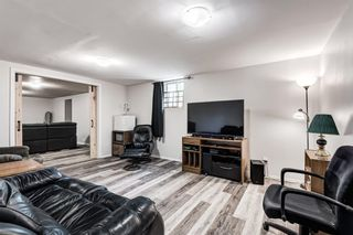 Photo 35: 459 Queen Charlotte Road SE in Calgary: Queensland Detached for sale : MLS®# A1122590