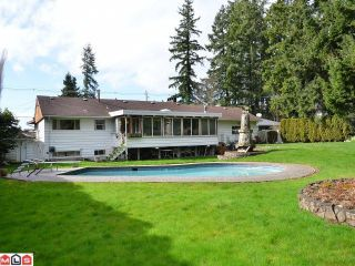 Photo 10: 5844 132ND Street in Surrey: Panorama Ridge House for sale : MLS®# F1206809