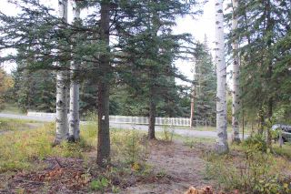 Photo 4: LOT 49 WOLFE ROAD in 100 Mile House: Horse Lake Land Only for sale (100 Mile House (Zone 10))  : MLS®# R2308751