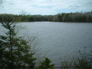 Photo 14: LOT 07-8 Lot07-8 KERRS MILLS Road in Wallace River West: 103-Malagash, Wentworth Vacant Land for sale (Northern Region)  : MLS®# 5161969