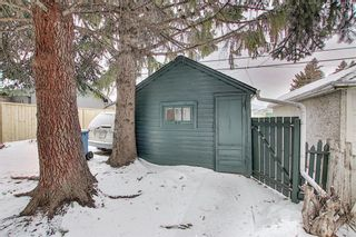 Photo 39: 218 19 Avenue NW in Calgary: Tuxedo Park Detached for sale : MLS®# A1073840