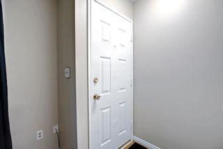 Photo 3: 14231 30 Street in Edmonton: Zone 35 House for sale : MLS®# E4261642