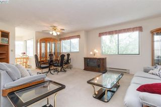 Photo 5: 211 3900 Shelbourne St in VICTORIA: SE Cedar Hill Condo for sale (Saanich East)  : MLS®# 795183