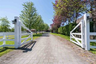 Photo 19: 7225 BLENHEIM Street in Vancouver: Southlands House for sale (Vancouver West)  : MLS®# R2482803