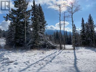 Photo 3: 59 Kananaskis Place in Coleman: Condo for sale : MLS®# A1153782