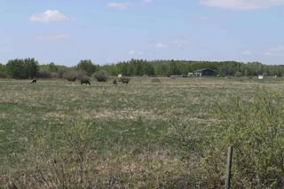 Photo 41: 48342 RR 262: Rural Leduc County House for sale : MLS®# E4231120