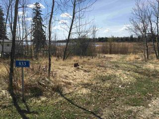 Photo 3: 833 Westcove Drive: Rural Lac Ste. Anne County Rural Land/Vacant Lot for sale : MLS®# E4247749