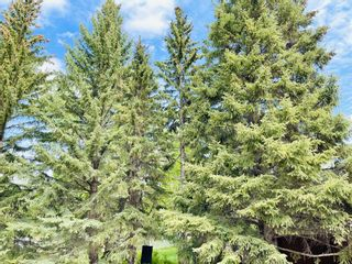 Photo 6: 432 Macleod Trail SW: High River Residential Land for sale : MLS®# A1117543