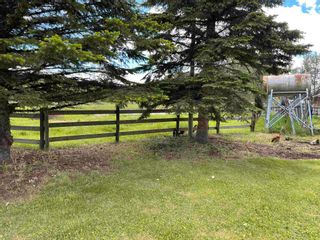 Photo 37: 64304 RGE RD 20: Rural Westlock County House for sale : MLS®# E4251071