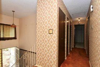 Photo 11: 11951 210 Street in Maple Ridge: Southwest Maple Ridge House for sale : MLS®# R2447211