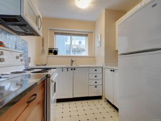 Photo 19: 258 Richmond Ave in : Vi Fairfield East House for sale (Victoria)  : MLS®# 863286