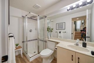 Photo 26: 125 Coventry Mews NE in Calgary: Coventry Hills Detached for sale : MLS®# A1017866