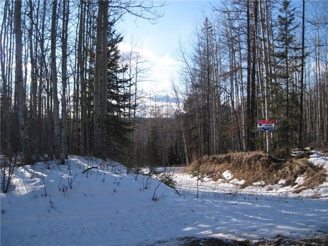 Main Photo: 6 BERYL PRAIRIE Road: Hudsons Hope Land for sale (Fort St. John (Zone 60))  : MLS®# N234174