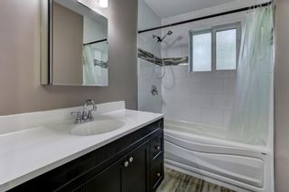 Photo 21: 74 32 WHITNEL Court NE in Calgary: Whitehorn Row/Townhouse for sale : MLS®# A1016839