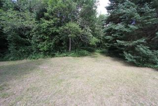 Photo 25: 300 Pinery Road in Kawartha Lakes: Rural Somerville Property for sale : MLS®# X4840235